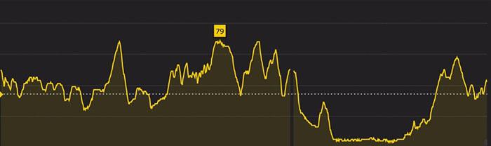Trail de la fougère -  Profil 17 km