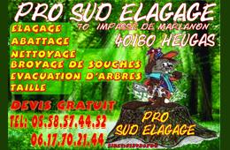 Pro Sud Elagage